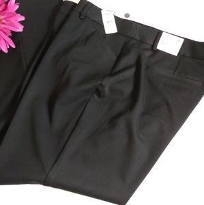 NWT Express Editor Barely Boot Low Rise pants
